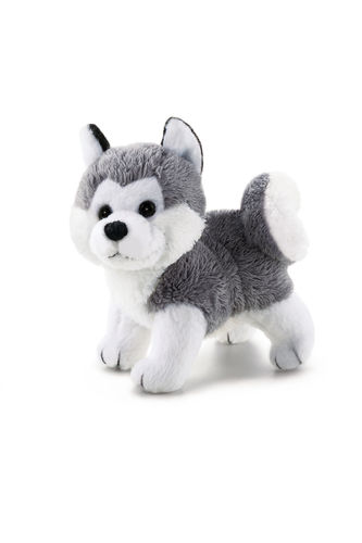 Trudi Sweet Collection Husky